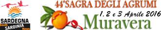La Sagra degli Agrumi 2016 Città di Muravera